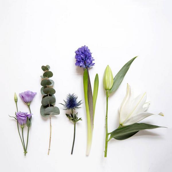 livraison-box-fleurs-blooms-paris