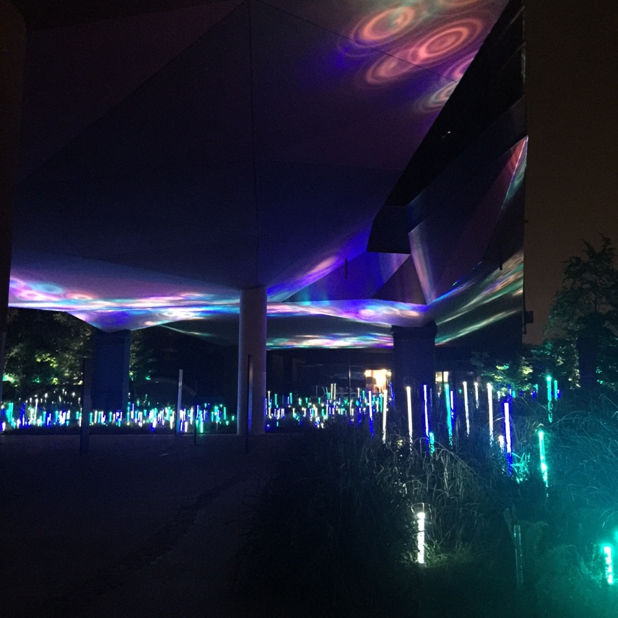 musée du quai branly nocturnes
