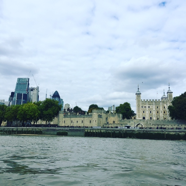 cityguide-londres-croisiere-tamise
